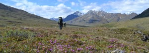 Hiking along the Hulahula River, Arctic National Wildlife Refuge